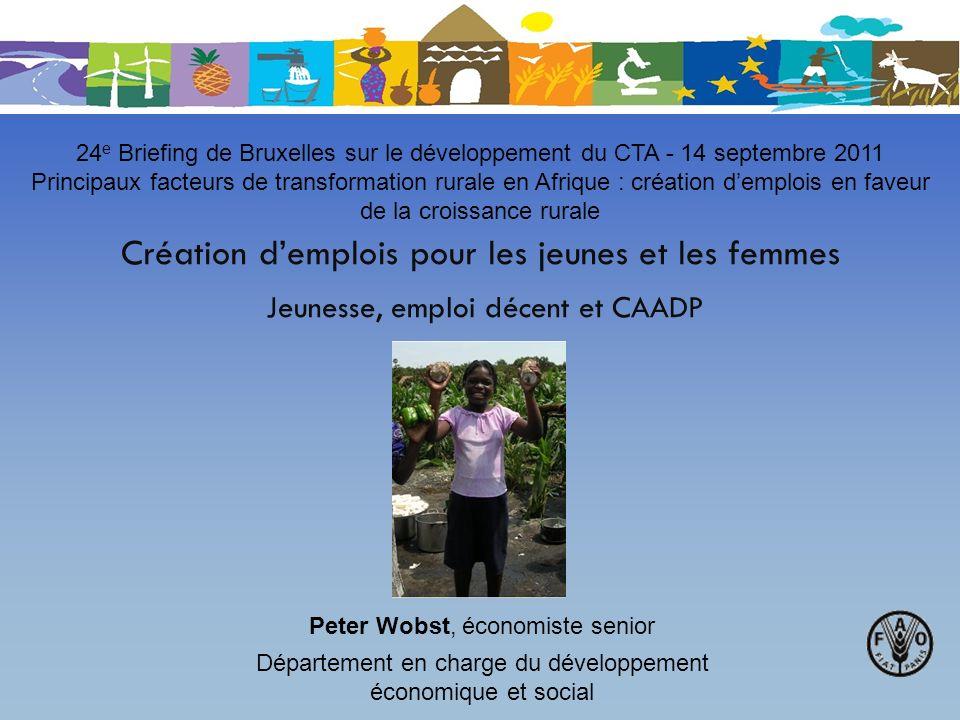 Création demplois pour les jeunes et les femmes Jeunesse, emploi décent et CAADP 24 e Briefing de Bruxelles sur le développement du CTA - 14 septembre