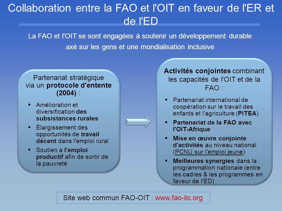 Collaboration entre la FAO et l'OIT en faveur de l'ER et de l'ED Partenariat stratégique via un protocole d'entente (2004) : Amélioration et diversifi