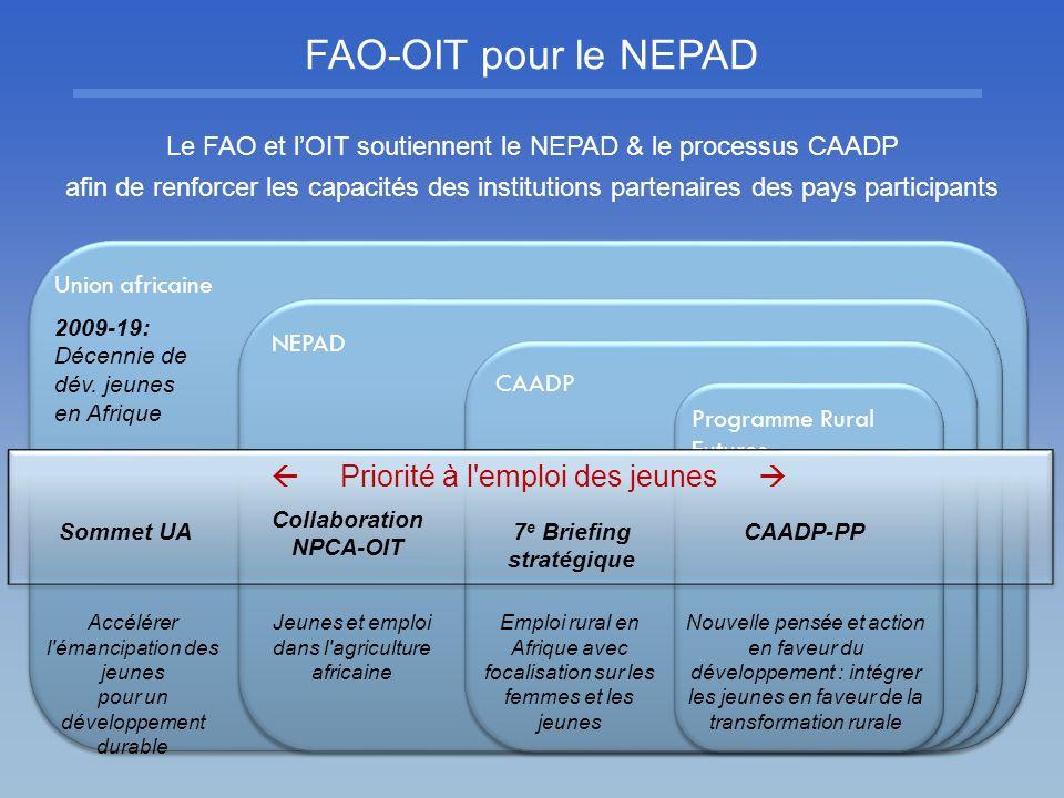 FAO-OIT pour le NEPAD Le FAO et lOIT soutiennent le NEPAD & le processus CAADP afin de renforcer les capacités des institutions partenaires des pays p
