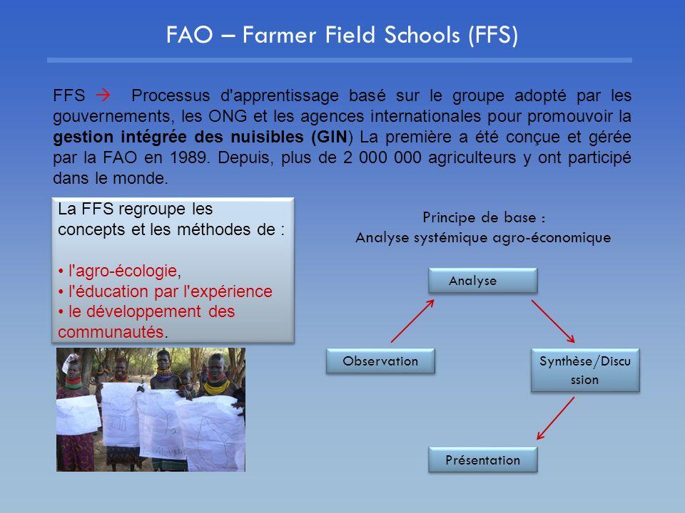 FAO – Farmer Field Schools (FFS) FFS Processus d'apprentissage basé sur le groupe adopté par les gouvernements, les ONG et les agences internationales