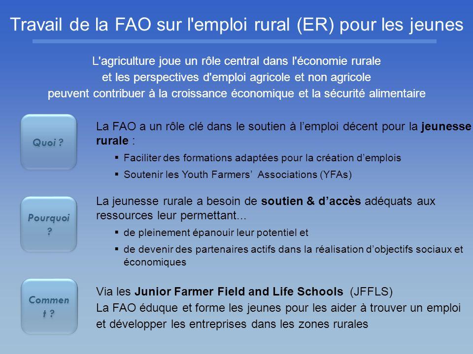 Travail de la FAO sur l'emploi rural (ER) pour les jeunes Quoi ? Pourquoi ? Commen t ? La FAO a un rôle clé dans le soutien à lemploi décent pour la j