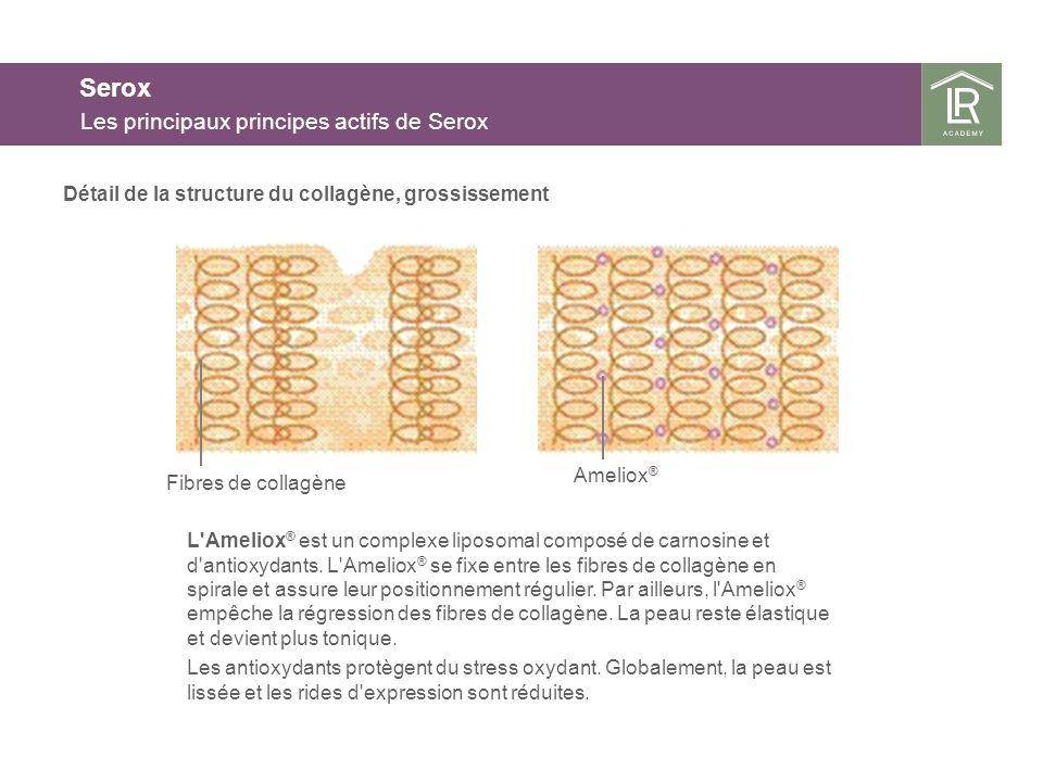 Détail de la structure du collagène, grossissement Serox Les principaux principes actifs de Serox L'Ameliox ® est un complexe liposomal composé de car