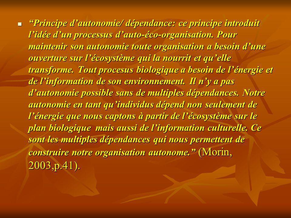 Principe dautonomie/ dépendance: ce principe introduit lidée dun processus dauto-éco-organisation. Pour maintenir son autonomie toute organisation a b