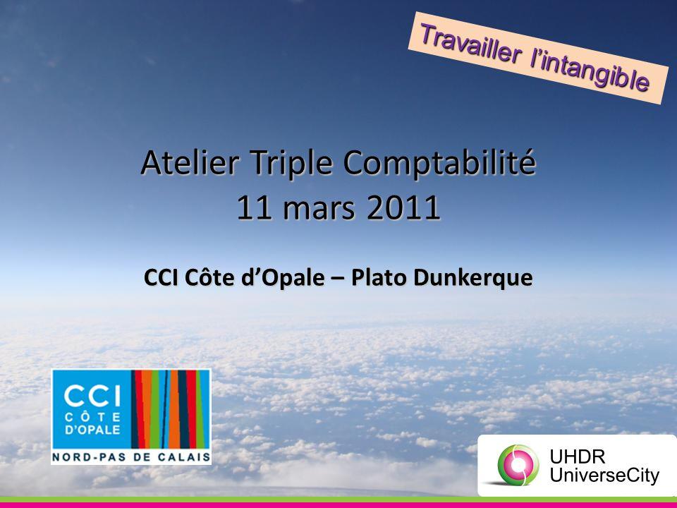 Atelier Triple Comptabilité 11 mars 2011 CCI Côte dOpale – Plato Dunkerque Travailler lintangible