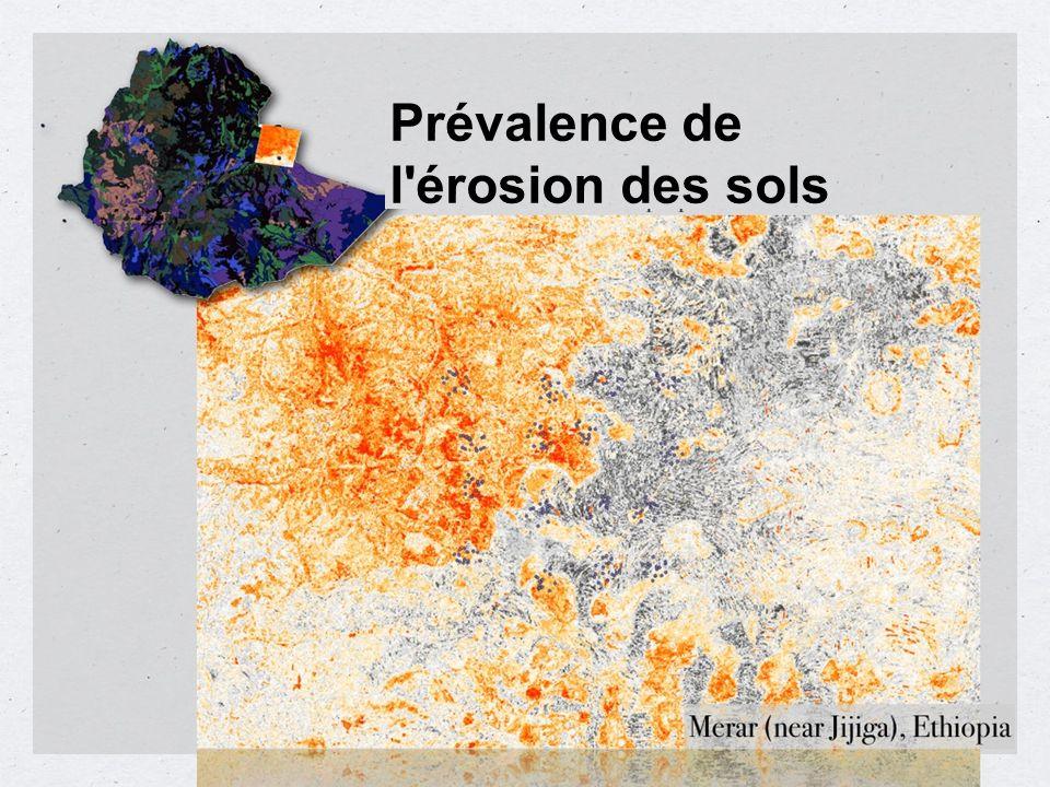 Prévalence de l'érosion des sols