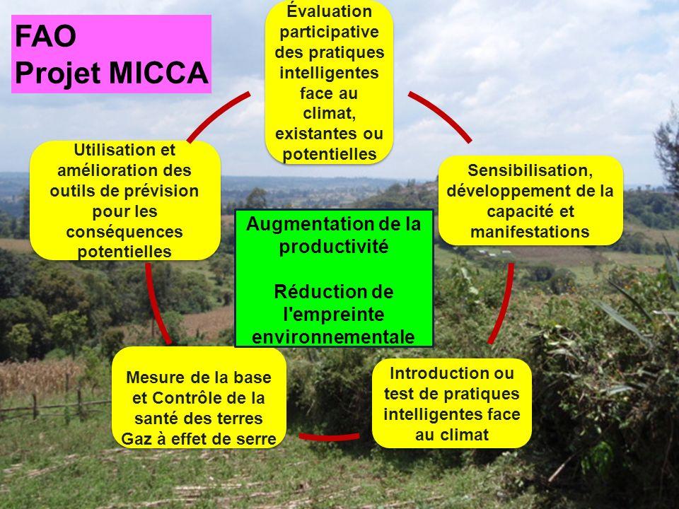 Évaluation participative des pratiques intelligentes face au climat, existantes ou potentielles Sensibilisation, développement de la capacité et manifestations Introduction ou test de pratiques intelligentes face au climat Mesure de la base et Contrôle de la santé des terres Gaz à effet de serre Mesure de la base et Contrôle de la santé des terres Gaz à effet de serre Utilisation et amélioration des outils de prévision pour les conséquences potentielles Augmentation de la productivité Réduction de l empreinte environnementale FAO Projet MICCA