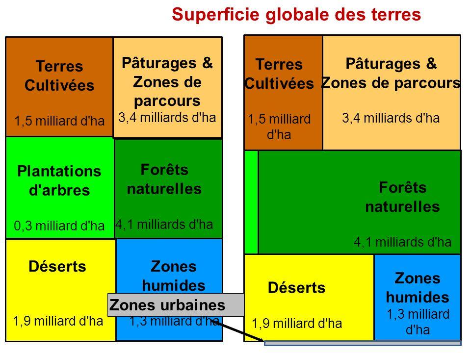 Forêts naturelles 4,1 milliards d ha Terres Cultivées 1,5 milliard d ha Plantations d arbres 0,3 milliard d ha Pâturages & Zones de parcours 3,4 milliards d ha Zones humides 1,3 milliard d ha Déserts 1,9 milliard d ha Forêts naturelles 4,1 milliards d ha Terres Cultivées 1,5 milliard d ha Pâturages & Zones de parcours 3,4 milliards d ha Zones humides 1,3 milliard d ha Déserts 1,9 milliard d ha Superficie globale des terres Zones urbaines