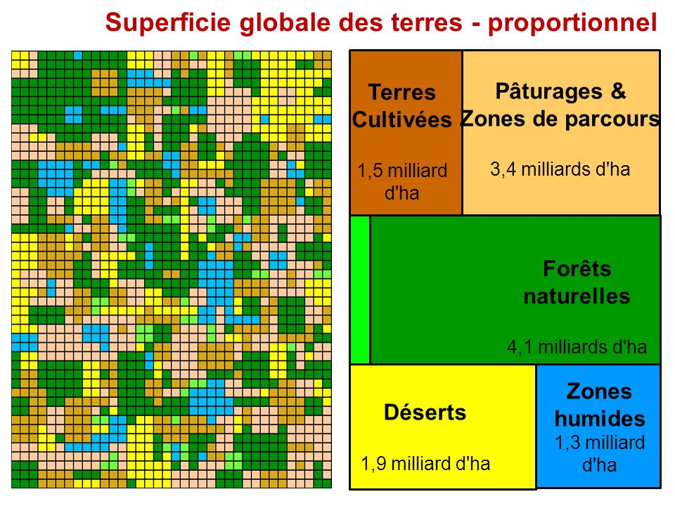 Forêts naturelles 4,1 milliards d'ha Terres Cultivées 1,5 milliard d'ha Pâturages & Zones de parcours 3,4 milliards d'ha Zones humides 1,3 milliard d'