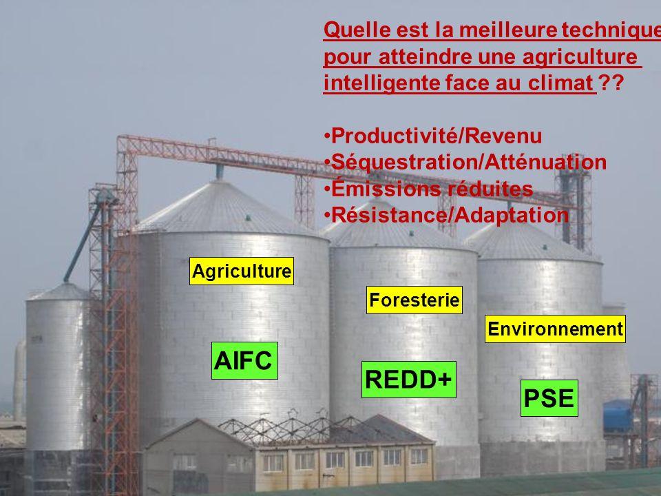 Agriculture Foresterie Environnement Quelle est la meilleure technique pour atteindre une agriculture intelligente face au climat ?? Productivité/Reve