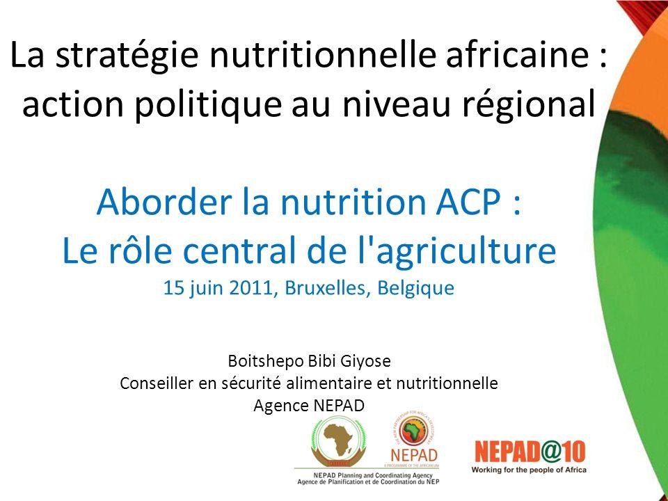 La stratégie nutritionnelle africaine : action politique au niveau régional Aborder la nutrition ACP : Le rôle central de l'agriculture 15 juin 2011,
