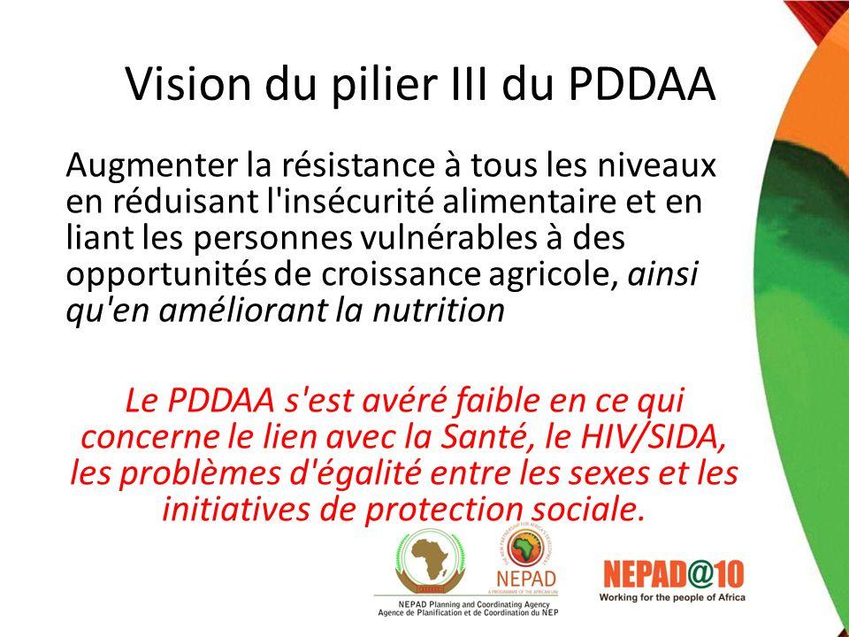 Vision du pilier III du PDDAA Augmenter la résistance à tous les niveaux en réduisant l'insécurité alimentaire et en liant les personnes vulnérables à