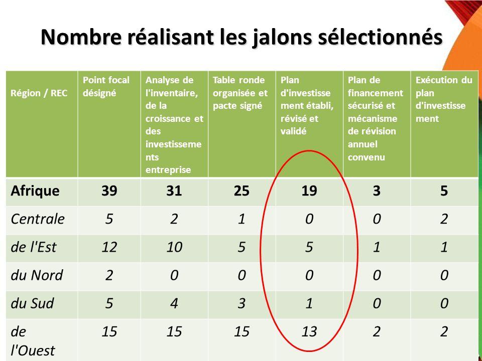 Nombre réalisant les jalons sélectionnés Région / REC Point focal désigné Analyse de l'inventaire, de la croissance et des investisseme nts entreprise