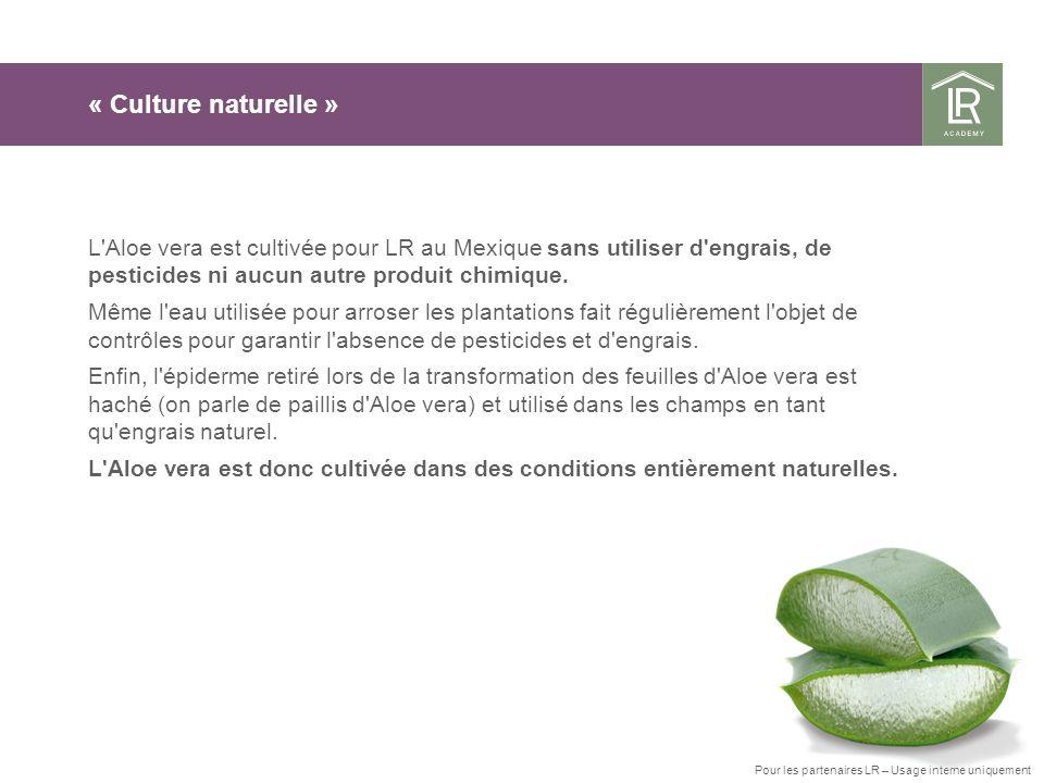 « Culture naturelle » L'Aloe vera est cultivée pour LR au Mexique sans utiliser d'engrais, de pesticides ni aucun autre produit chimique. Même l'eau u