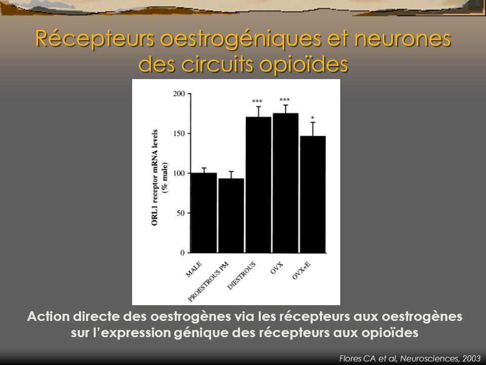 Récepteurs oestrogéniques et neurones des circuits opioïdes Action directe des oestrogènes via les récepteurs aux oestrogènes sur lexpression génique