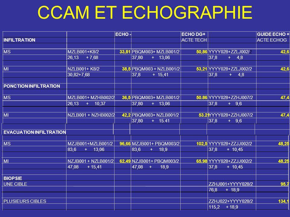 ECHO -ECHO DG+GUIDE ECHO + INFILTRATIONACTE TECHACTE ECHOG MSMZLB001+K8/233,81PBQM003+ MZLB001/250,86YYYY028+ZZLJ002/242,6 26,13 + 7,6837,80 + 13,0637