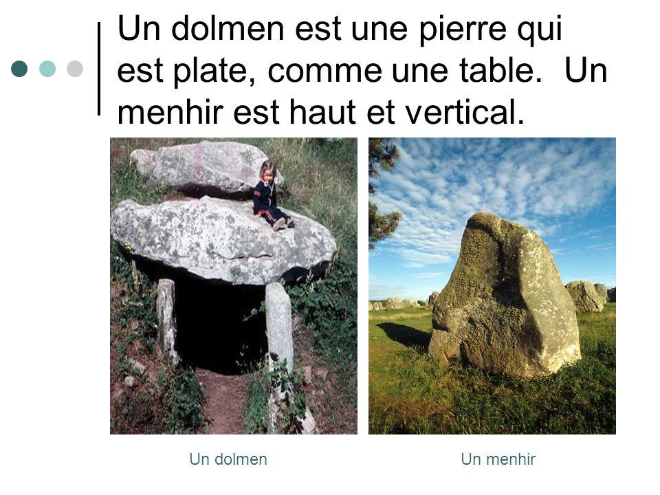 Un dolmen est une pierre qui est plate, comme une table. Un menhir est haut et vertical. Un menhirUn dolmen
