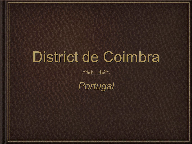 Jour 3 et 4 visite de Figueira da Foz