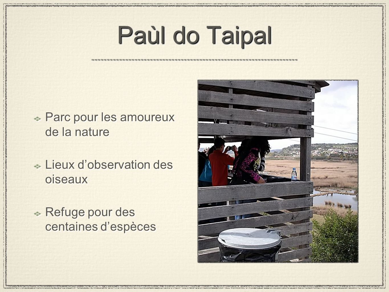Paùl do Taipal Parc pour les amoureux de la nature Lieux dobservation des oiseaux Refuge pour des centaines despèces Parc pour les amoureux de la natu