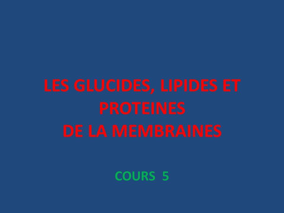 LES GLUCIDES, LIPIDES ET PROTEINES DE LA MEMBRAINES COURS 5