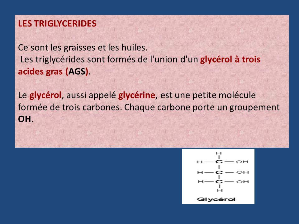 LES TRIGLYCERIDES Ce sont les graisses et les huiles. Les triglycérides sont formés de l'union d'un glycérol à trois acides gras (AGS). Le glycérol, a