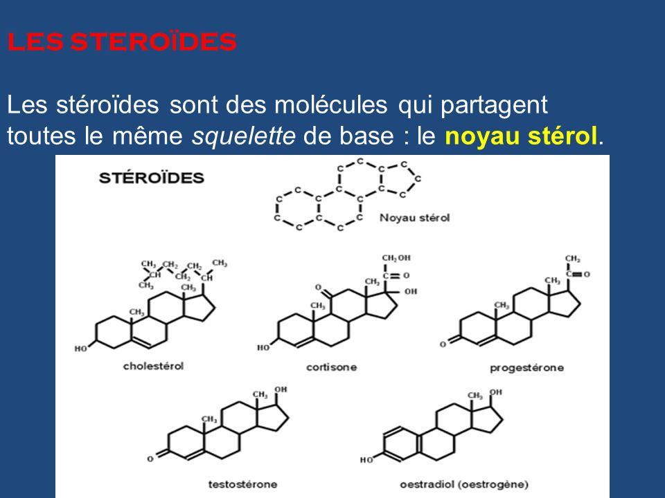 LES STERO Ï DES Les stéroïdes sont des molécules qui partagent toutes le même squelette de base : le noyau stérol.