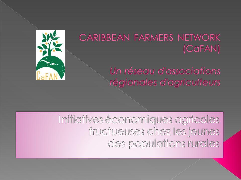 Le CaFAN s associe au Centre technique de coopération agricole et rurale (CTA) au sein du projet ARDYIS (agriculture, développement rural et jeunesse dans la société de linformation) afin d encourager une participation plus grande des jeunes au secteur agricole.