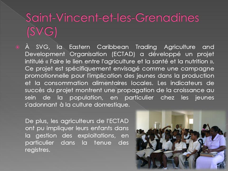 À SVG, la Eastern Caribbean Trading Agriculture and Development Organisation (ECTAD) a développé un projet intitulé « Faire le lien entre l agriculture et la santé et la nutrition ».