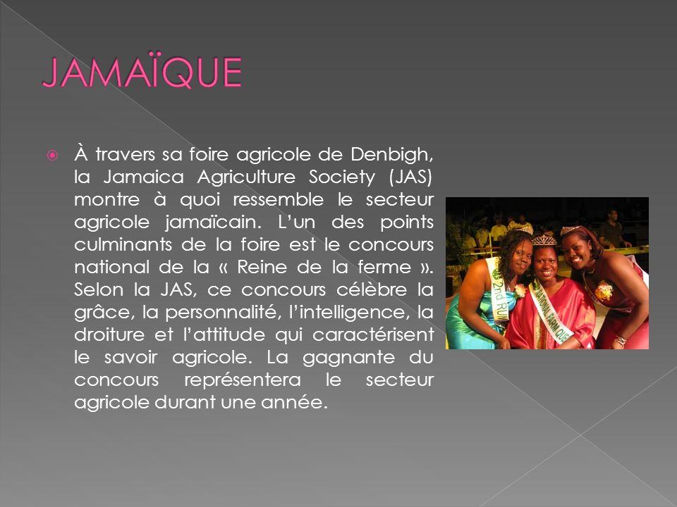 À travers sa foire agricole de Denbigh, la Jamaica Agriculture Society (JAS) montre à quoi ressemble le secteur agricole jamaïcain.