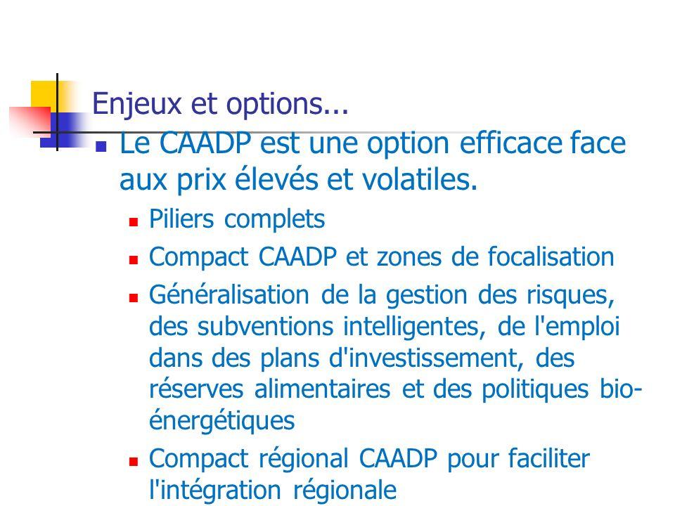 Enjeux et options... Le CAADP est une option efficace face aux prix élevés et volatiles.
