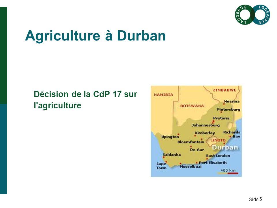Side 5 Agriculture à Durban Décision de la CdP 17 sur l agriculture