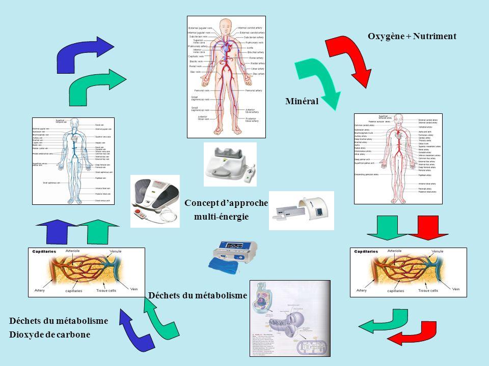 Oxygène + Nutriment Minéral Déchets du métabolisme Dioxyde de carbone Déchets du métabolisme Concept dapproche multi-énergie