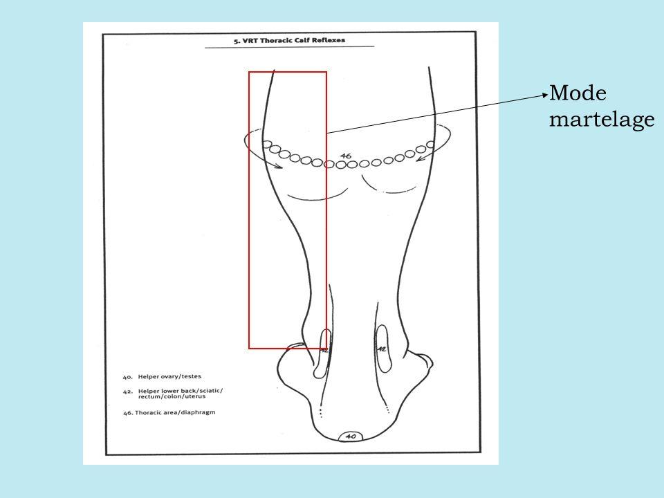 Parties stimulées de votre corps en mode détente Mode détente stimule les muscles au dessus des pieds, à lextérieur des mollets et à lintérieur des chevilles.