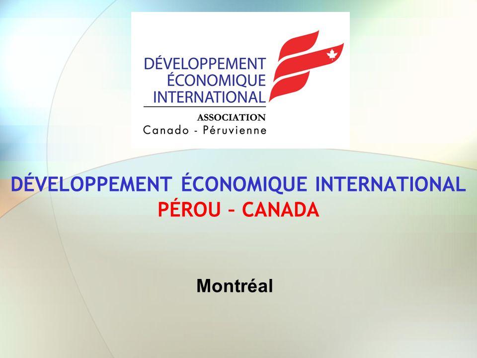 DIRECTION DE DÉVELOPPEMENT ÉCONOMIQUE INTERNATIONAL PÉROU-CANADA La Direction de Développement Économique International de lAssociation Canado-Péruvienne, a été créée le 23 janvier 2010 par unanimité au cours de lassemblée générale ordinaire.
