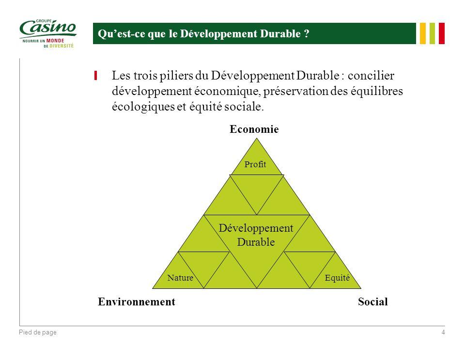 Pied de page4 Quest-ce que le Développement Durable ? Les trois piliers du Développement Durable : concilier développement économique, préservation de