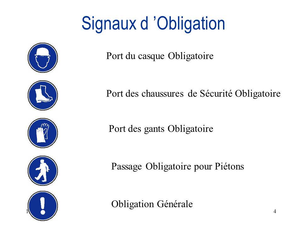 11/11/20134 Signaux d Obligation Port du casque Obligatoire Port des chaussures de Sécurité Obligatoire Port des gants Obligatoire Passage Obligatoire