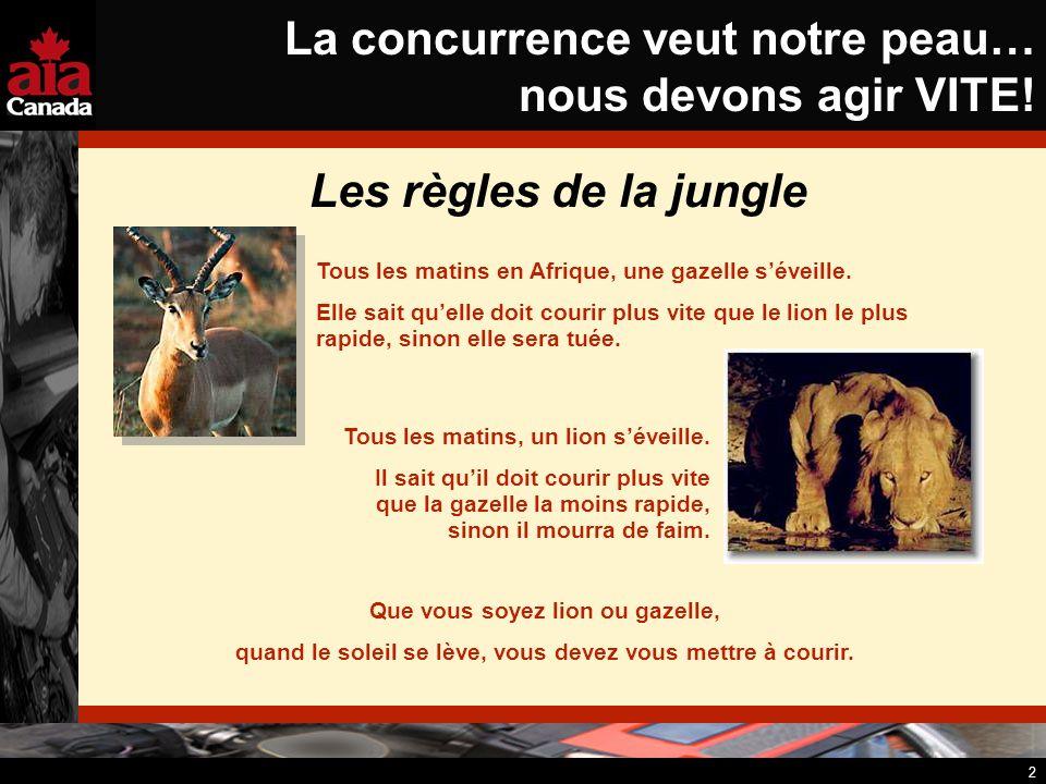 2 La concurrence veut notre peau… nous devons agir VITE! Les règles de la jungle Tous les matins en Afrique, une gazelle séveille. Elle sait quelle do