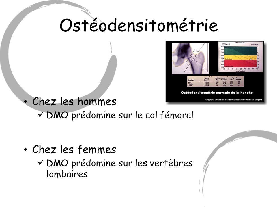 Ostéodensitométrie Chez les hommes DMO prédomine sur le col fémoral Chez les femmes DMO prédomine sur les vertèbres lombaires