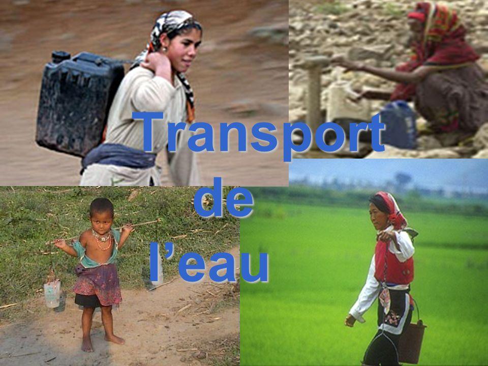 Transport de leau