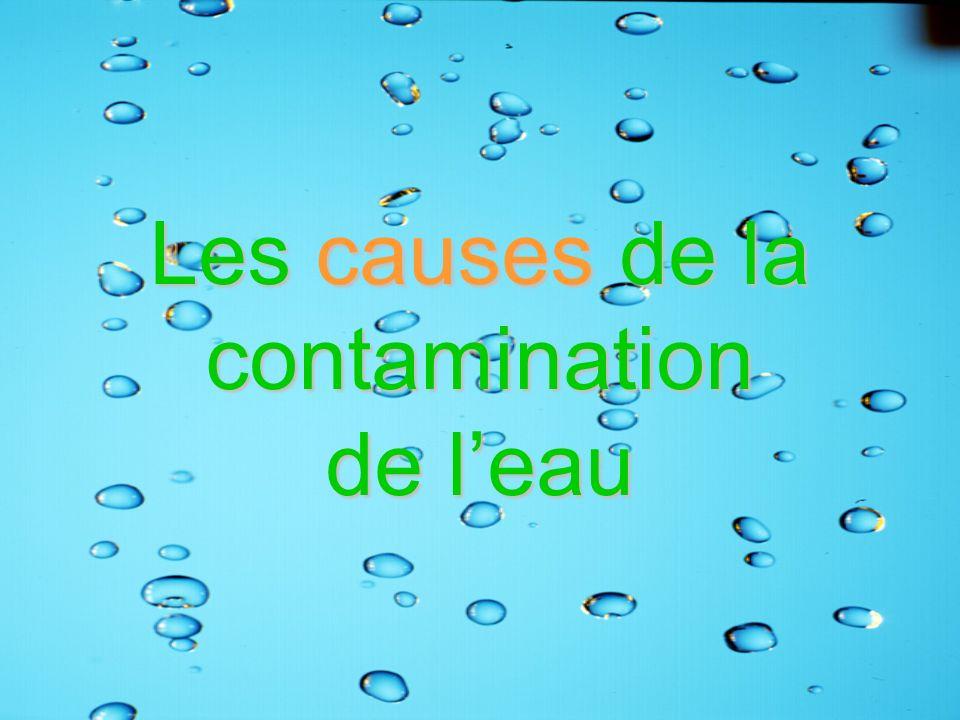 Les causes de la contamination de leau