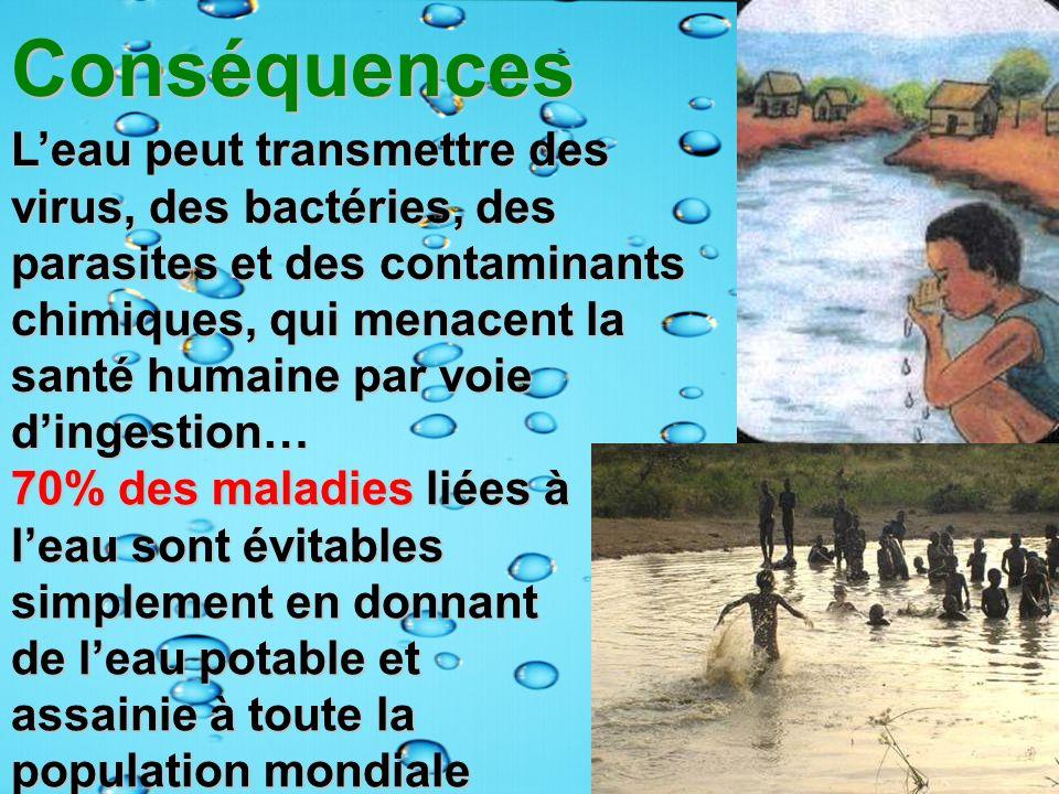 Conséquences Conséquences Leau peut transmettre des virus, des bactéries, des parasites et des contaminants chimiques, qui menacent la santé humaine p