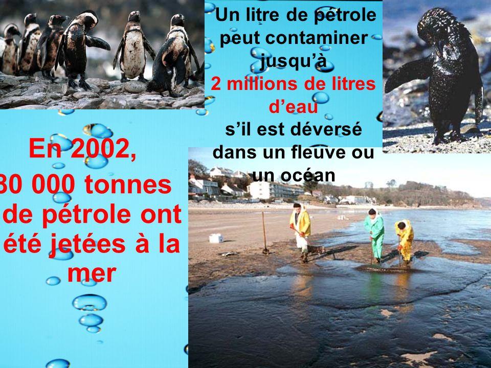 En 2002, 80 000 tonnes de pétrole ont été jetées à la mer Un litre de pétrole peut contaminer jusquà 2 millions de litres deau sil est déversé dans un