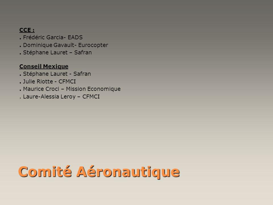 Comité Aéronautique CCE :. Frédéric Garcia- EADS. Dominique Gavault- Eurocopter. Stéphane Lauret – Safran Conseil Mexique. Stéphane Lauret - Safran. J