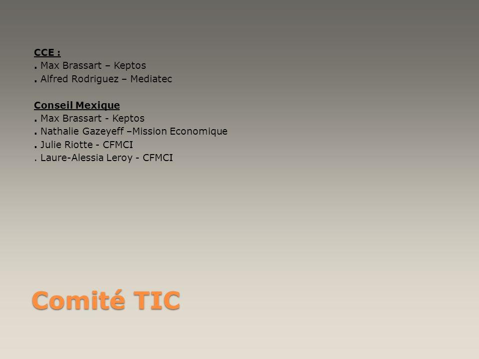Comité TIC CCE :. Max Brassart – Keptos. Alfred Rodriguez – Mediatec Conseil Mexique. Max Brassart - Keptos. Nathalie Gazeyeff –Mission Economique. Ju