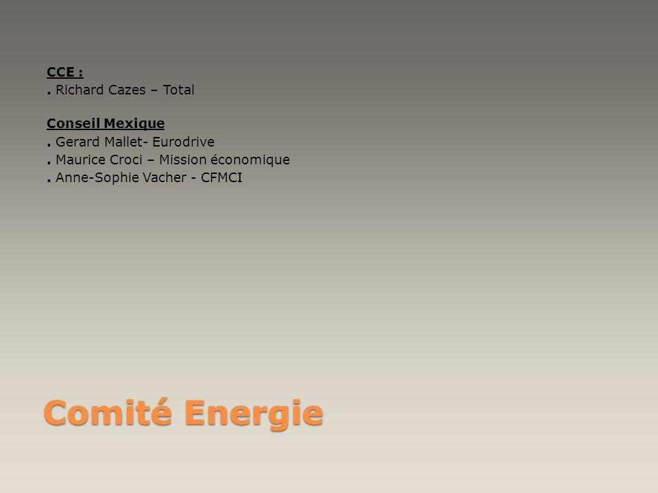 Comité Energie CCE :. Richard Cazes – Total Conseil Mexique. Gerard Mallet- Eurodrive. Maurice Croci – Mission économique. Anne-Sophie Vacher - CFMCI