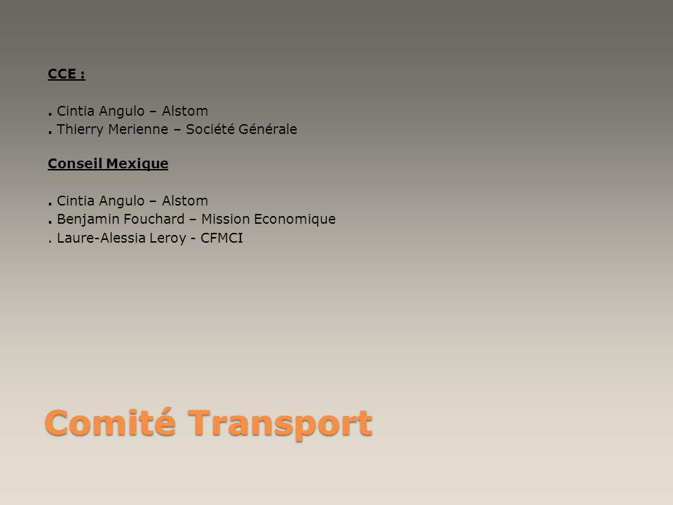 Comité Transport CCE :. Cintia Angulo – Alstom. Thierry Merienne – Société Générale Conseil Mexique. Cintia Angulo – Alstom. Benjamin Fouchard – Missi