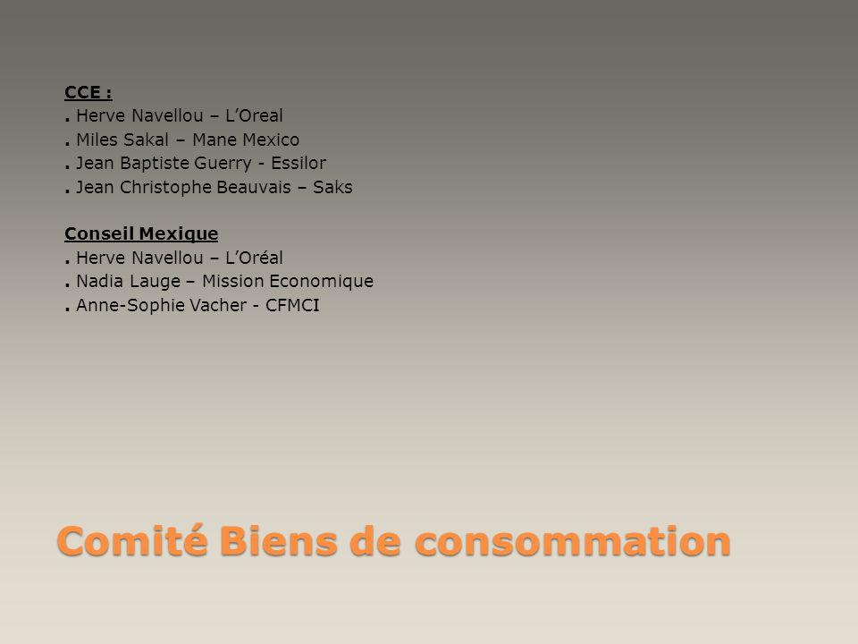 Comité Biens de consommation CCE :. Herve Navellou – LOreal. Miles Sakal – Mane Mexico. Jean Baptiste Guerry - Essilor. Jean Christophe Beauvais – Sak
