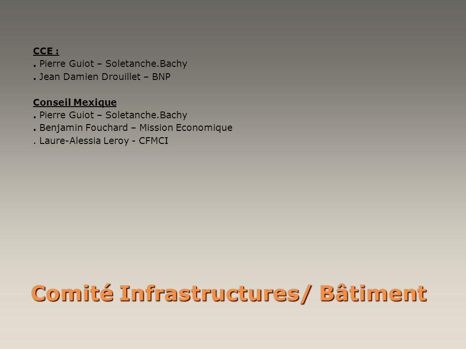 Comité Infrastructures/ Bâtiment CCE :. Pierre Guiot – Soletanche.Bachy. Jean Damien Drouillet – BNP Conseil Mexique. Pierre Guiot – Soletanche.Bachy.