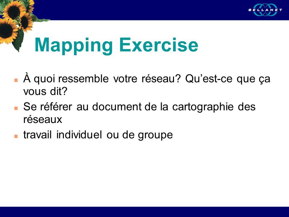 Mapping Exercise À quoi ressemble votre réseau? Quest-ce que ça vous dit? Se référer au document de la cartographie des réseaux travail individuel ou