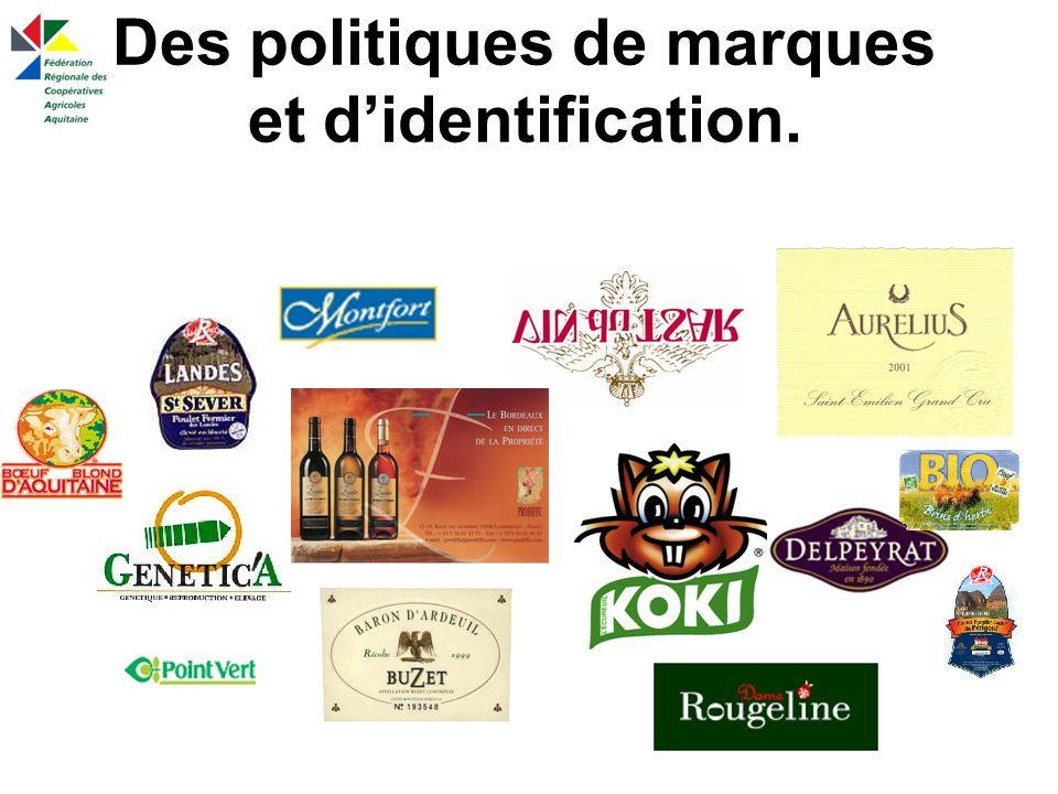 Des politiques de marques et didentification.