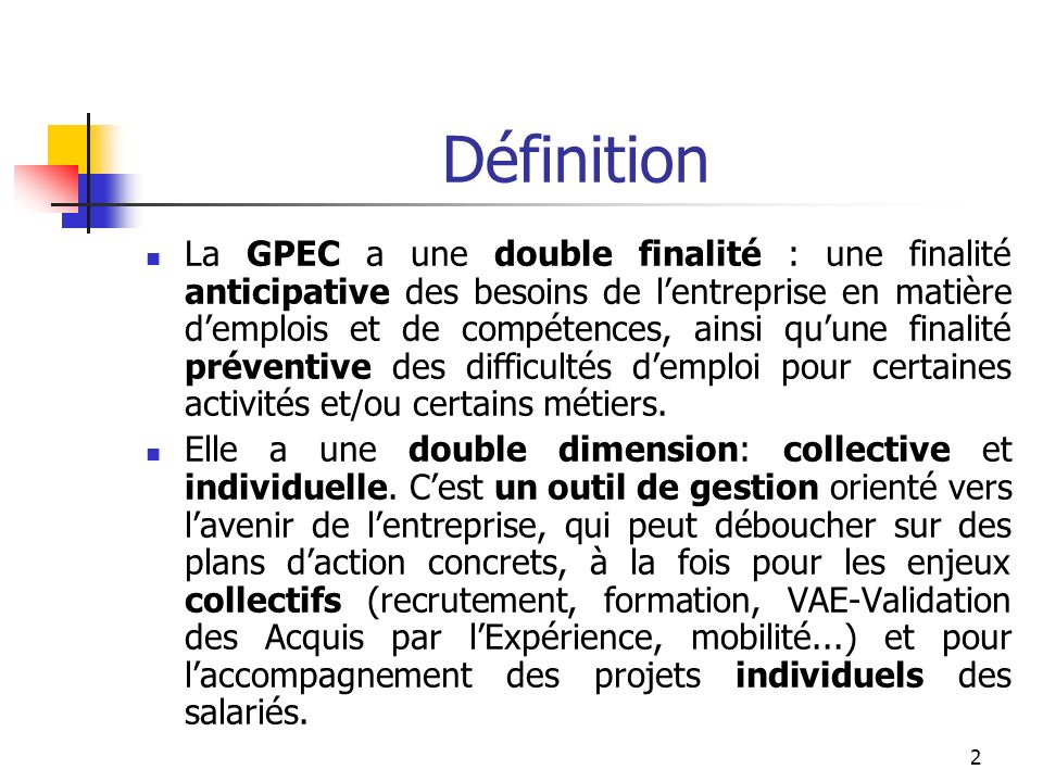 1 G P E C la Gestion Prévisionnelle de lEmploi et des Compétences
